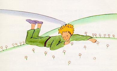 The little prince lying on medow